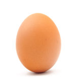 Chicken egg. On white background royalty free stock images