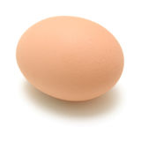 Chicken Egg. On white background Royalty Free Stock Image