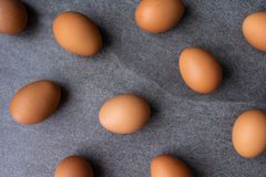 Chicken egg on the concrete table background.  stock photo
