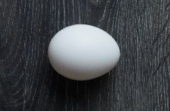 Chicken Egg on Dark Background royalty free stock photos