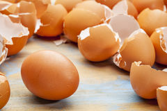 Chicken egg and eggshels Royalty Free Stock Photos
