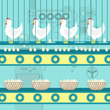 Chicken egg factory Stock Photo
