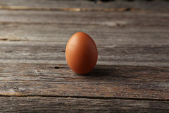 Chicken egg on grey wooden background. Royalty Free Stock Images