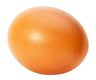 Chicken egg  isolated on the white background Stock Images
