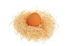 Chicken egg in nest isolated on white background Royalty Free Stock Images