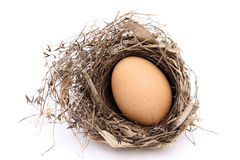 Chicken egg in a nest Stock Images