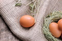 Chicken egg next to eggs in a nest of grass on a brown wooden background. Brown chicken egg next to eggs in a nest of grass on a brown wooden background stock photo