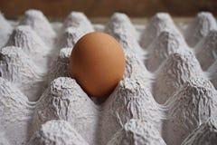 Chicken egg Stock Photos