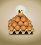 Chicken egg in panel eggs. Eps10 vector of chicken egg in panel eggs Royalty Free Stock Photography
