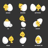 Chicken and egg set. Learning preposition with bird