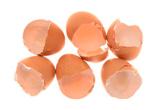 Chicken Egg Shells Stock Photo