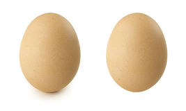 Chicken egg stand Stock Photo