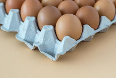 Chicken Egg on tray Stock Photography