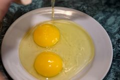 chicken egg with two yolks royalty free stock photos