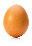 Chicken egg   on the white background Stock Image