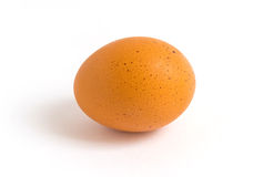 Chicken egg. On white background Royalty Free Stock Photography