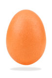 Chicken egg on white. Brown chicken egg on white background Royalty Free Stock Images