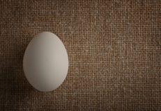 Chicken egg white Stock Photo