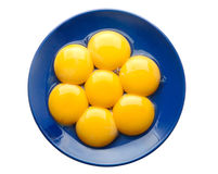 Chicken egg yolk Stock Photography