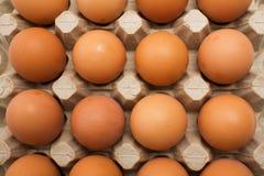 Chicken eggs Stock Photo