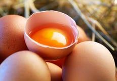 Chicken eggs Royalty Free Stock Photos