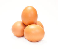 Free Chicken Eggs Royalty Free Stock Photo - 19203995