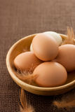 Chicken eggs. With feather in wooden bowl royalty free stock image
