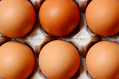 Chicken Eggs. Stock Photography