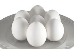 Chicken eggs. White chicken eggs in a plate on a white background Royalty Free Stock Photos