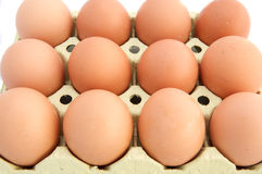 Chicken eggs Stock Photos