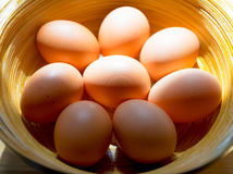 Chicken eggs in bamboo basket. Stock Images