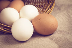 Chicken eggs in basket on burlap Royalty Free Stock Images