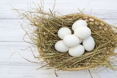 Chicken eggs in basket with hay on a white wooden background Stock Image