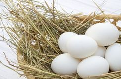 Chicken eggs in basket with hay on a white wooden background Royalty Free Stock Image