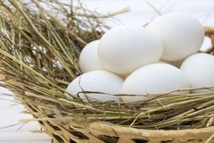 Chicken eggs in basket with hay on a white wooden background Stock Photos