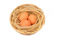 Chicken eggs in basket Royalty Free Stock Image