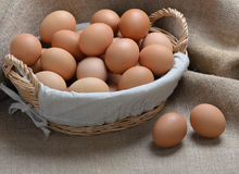 Chicken eggs in a basket on sackcloth Royalty Free Stock Photography