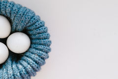 Chicken eggs in blue nest Royalty Free Stock Photography