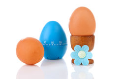 Chicken eggs with blue timer Stock Image