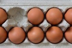 Fresh egg box stock image