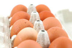 Chicken eggs in a box on white Royalty Free Stock Image