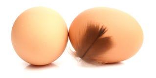 Chicken eggs with broken egg Royalty Free Stock Photos