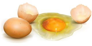 Chicken eggs broken and whole Stock Images