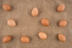 Chicken eggs on brown burlap. Royalty Free Stock Photography