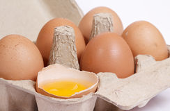 Chicken eggs in cardboard box Stock Photography