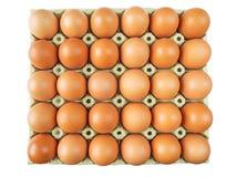 Chicken eggs in the cardboard box Stock Photo