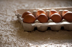 Chicken eggs in a cardboard box on a white background. Stock Photos