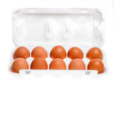 Chicken eggs in cardboard container. Ten chicken eggs in open cardboard container royalty free stock photo