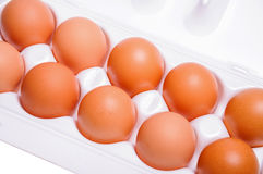 Chicken eggs in cardboard container. Ten chicken eggs in open cardboard container royalty free stock images
