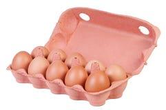 Chicken eggs in carton box. Stock Image